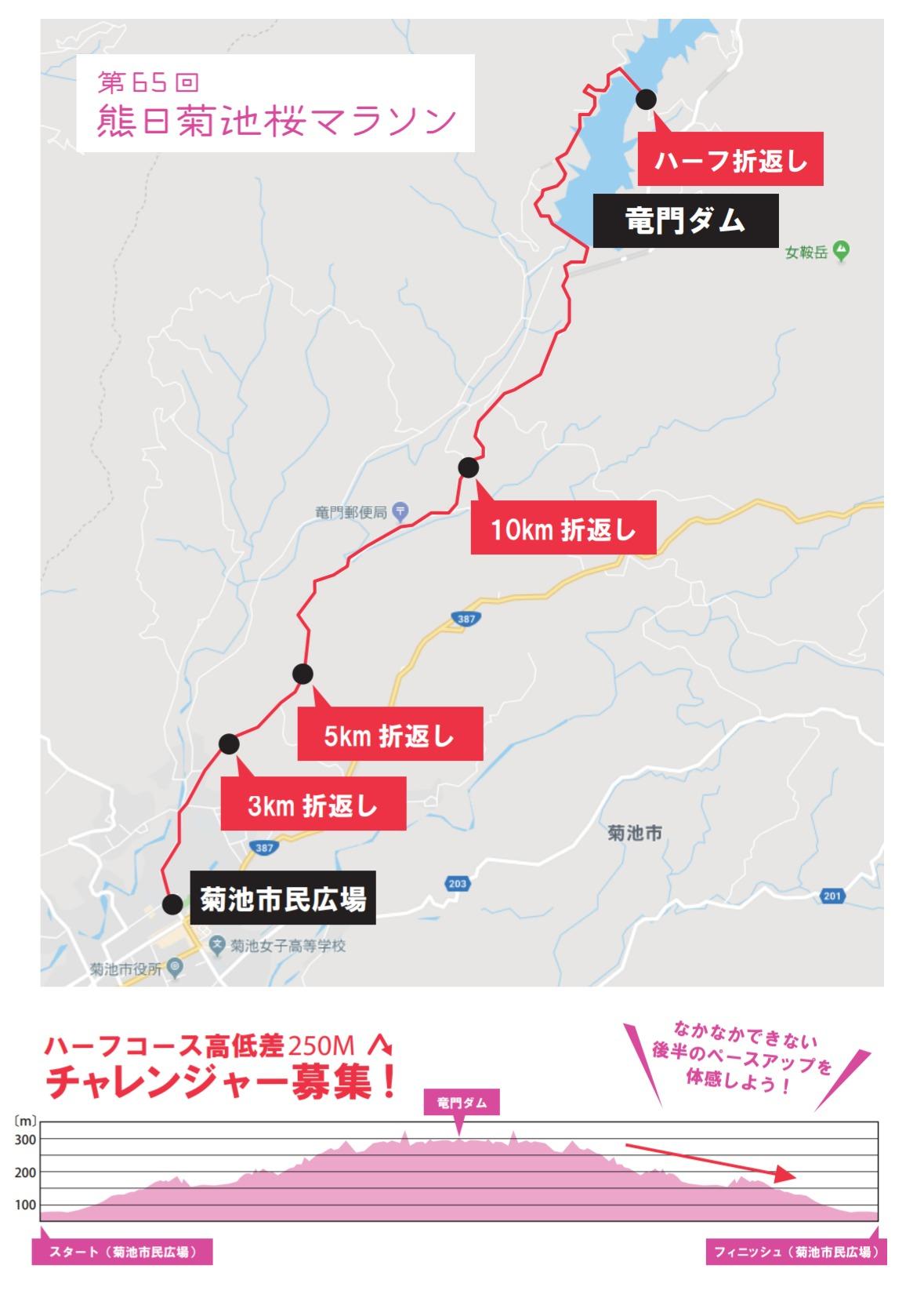 熊日菊池桜ハーフマラソンコースマップ&高低差マップ